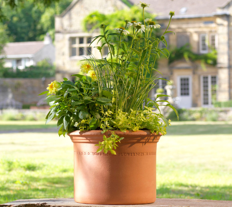 Yorkshire Flowerpots - Medium Heavy Cylinder